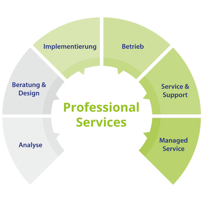 circular grafik professional services